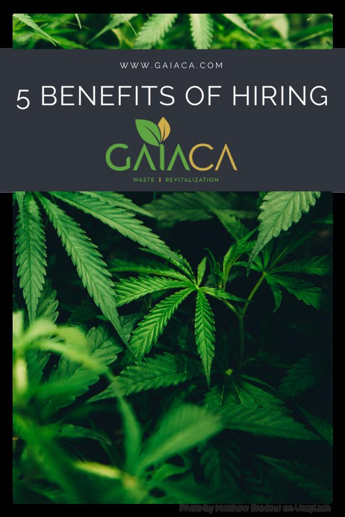 cannabis waste management provider