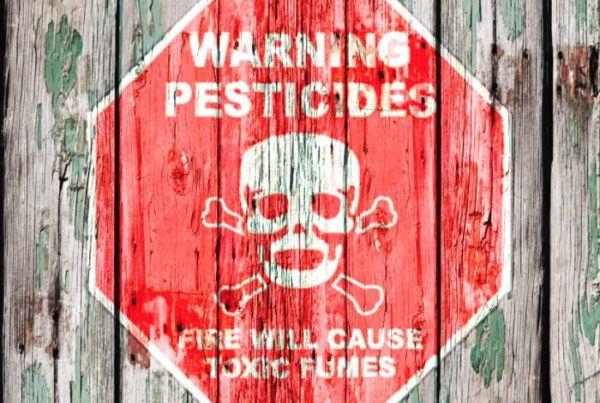 how to get rid of pesticides